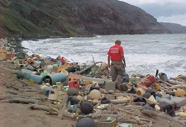 Pollution sur la cote Hawaiienne